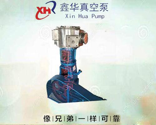 不锈钢真空泵WLW-100